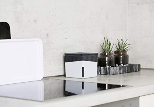 Wenko 50220100 Design Raumentfeuchter Cube 1000 g Luftentfeuchter - 8
