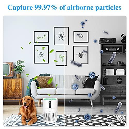 Luftreiniger DIKI Air Purifier mit HEPA-Kombifilter, Aktivkohlefilter und Ionisierer, 99,97% Filterleistung, bis zu 25M², CADR 150m³/h, für Allergiker gegen Hausstaub, Feinstaub, Pollen, Gerüche - 5