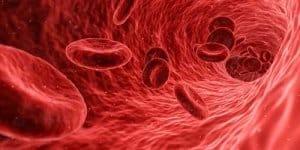 CO-Gas bindet sich an Blutkörperchen und verdrängt Sauerstoffmoleküle